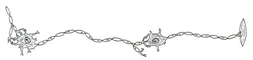 LogoAPQ-ancien